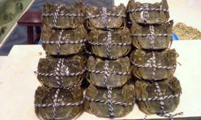 绑好的大闸蟹