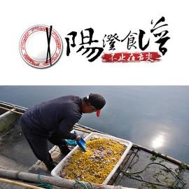 【阳澄食谱】揭秘:阳澄湖大闸蟹的早餐