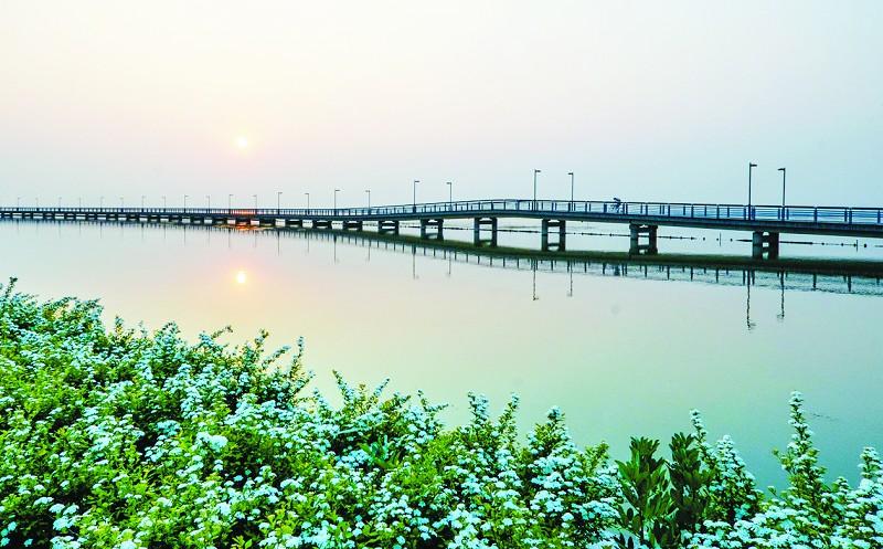 阳澄湖半岛:智慧的新型生态园
