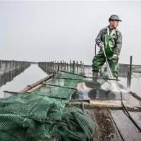 阳澄湖大闸蟹养殖场清洗进行时