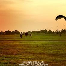 黄昏的阳澄湖边:骑马,滑翔机,游泳…