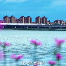 老地方了,也是阳澄湖畔……