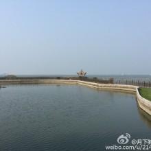 夏日里的阳澄湖[微笑]