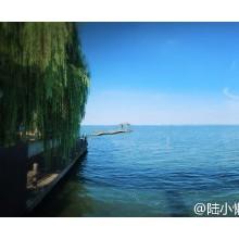 阳澄湖西服务站,还以为是个景区呢!