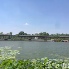 阳澄湖的天空很蓝 荷花很漂亮!小伙伴在重元寺烧香 我自己却在湖边闲逛 也是很开心自在的一件事![嘻嘻][嘻嘻][嘻嘻]