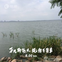 阳澄湖边,天高气爽,景色宜人