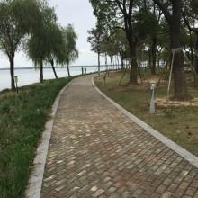 小伙伴来上海我们就一起玩玩玩逛逛逛吃吃吃,从阳澄湖窜到金鸡湖,一路欢声笑语,回忆儿时的各种快乐,我们享受着珍惜着这种时光。