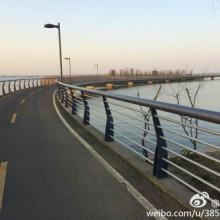 周末阳澄湖边骑自行车