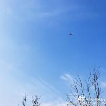 阳澄湖的一天。