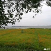 环阳澄湖-2 