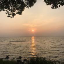 夕阳美了阳澄湖,蝉鸣美了时光