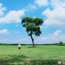 苏州阳澄湖半岛的夏末时光。