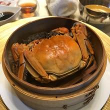 听说1945年的上海贫困家庭,靠吃阳澄湖大闸蟹艰难度日。 啊 好想回到1945年[允悲]