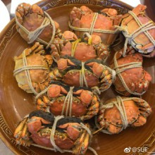 """""""青背白肚金爪黃毛""""陽澄湖大閘蟹  軟糯的膏 肥美的蟹黃 鮮嫩的肉  想住在陽澄湖畔 每天都有吃不完的螃蟹"""