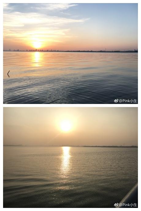 阳澄湖花开最多的时节就要到了[太开心][爱你] 