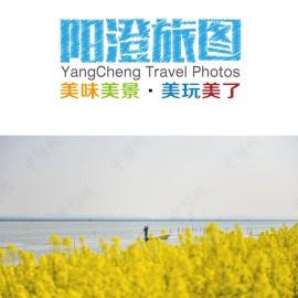 【阳澄旅图】阳澄湖油菜花季之美人腿