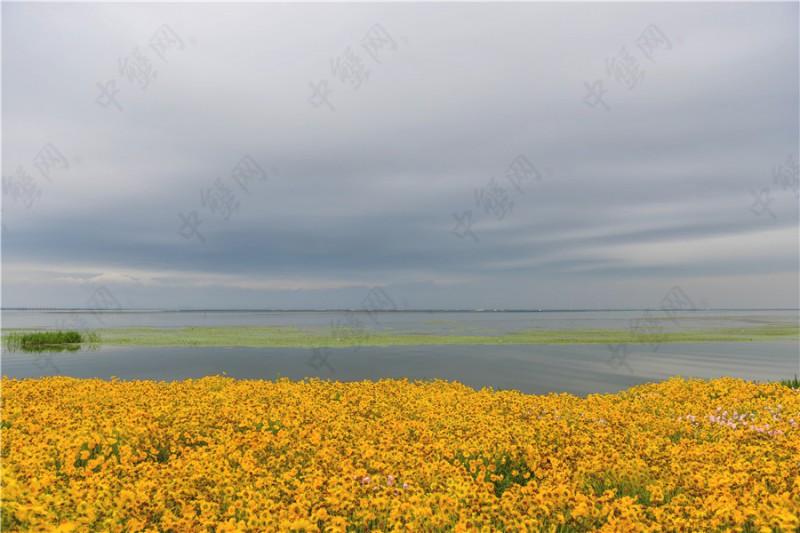 阳澄湖雨季旅游