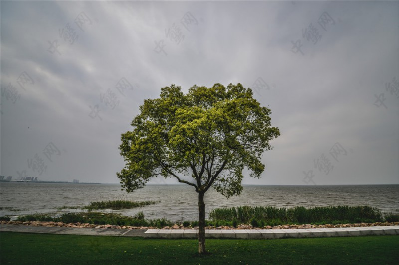阳澄湖雨季的云