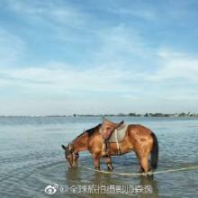苏州阳澄湖 苏州也是一个好地方