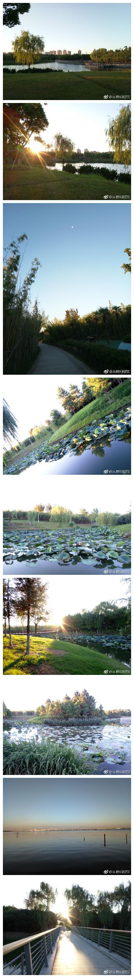 一草一花 一树一木 走过了春秋冬夏 清晨一缕阳光 唤醒了沉睡的心灵 映红了平静的湖面 【晨跑随拍阳澄湖生态体育公园】 