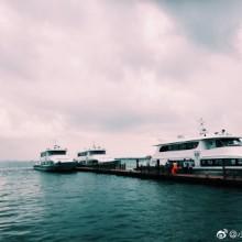 停电 暴雨 小岛  一群人 等雨停 不一样的九月间 ———阳澄湖之团建