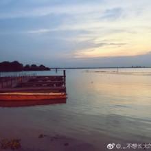 阳澄湖莲花岛今日打卡,螃蟹宝贝们威武![爱你][爱你] 2苏州 · 阳澄湖镇 