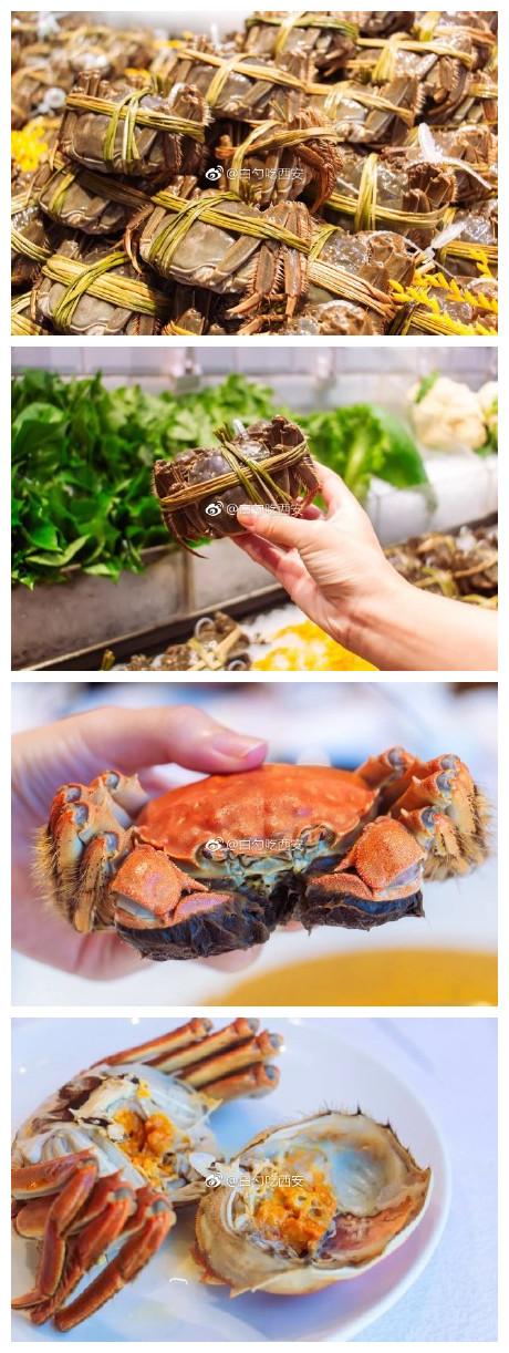 美食【此刻我需要两只阳澄湖大闸蟹】明明吃过饭才开始写菜品部分的我,居然没出息的越写越饿。不可辜负的美食 