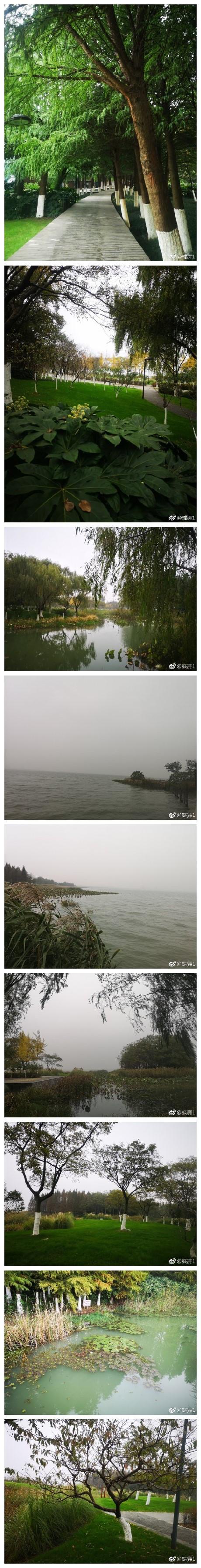 这不是梅陇镇,是下午的阳澄湖 2上海 · 梅陇镇