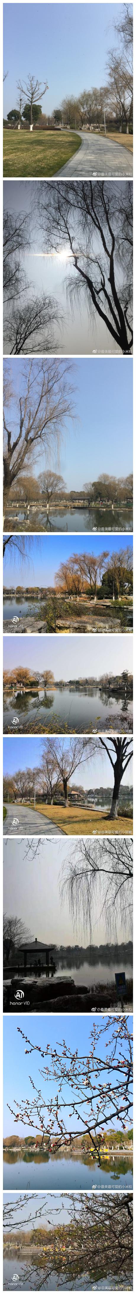 阳澄湖半岛莲池湖生态园 