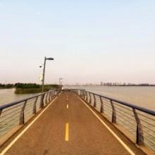 苏州阳澄湖 骑行赛道上 早晨的阳光 很安静的一条散步路线 骑行路线,跑步路线