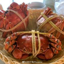 去完阳澄湖应酬回来,觉得那边风景好美蟹也很好,念念不忘租车带我去吃,还买了过敏药放着给我[憧憬]